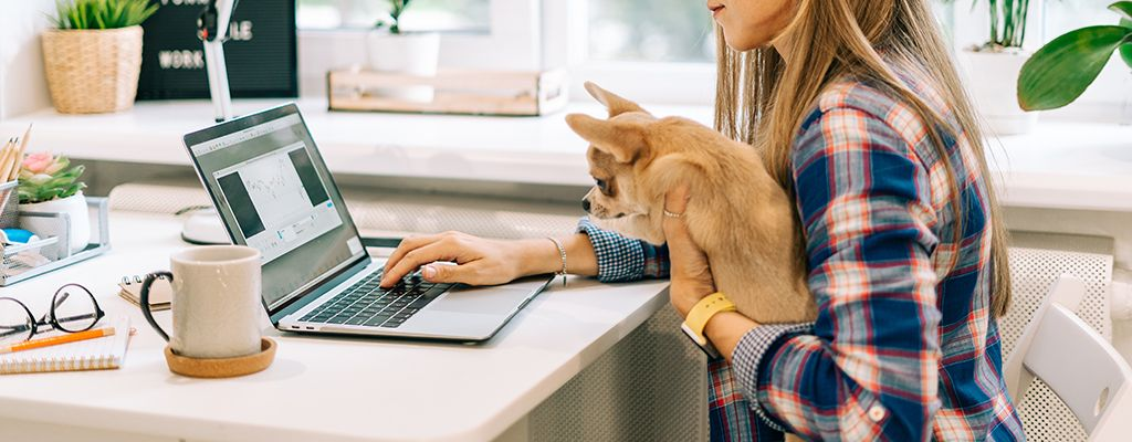 The young business woman with puppy dog talking over the mobile phone typing on laptop computer while sitting at home and drinking coffee. Distance learning online education and work with cellphone.